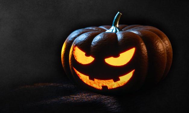 Du 21 au 31 octobre, animations Halloween à Champsecret